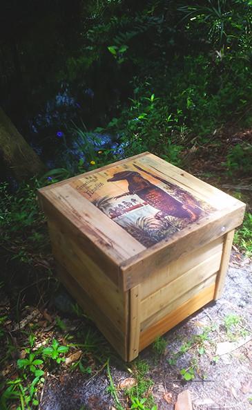 crate.old.alligator.jpg