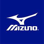 Square_Mizuno_RunBird_Blu.jpg