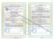 Сертификат ВНИИМС.png