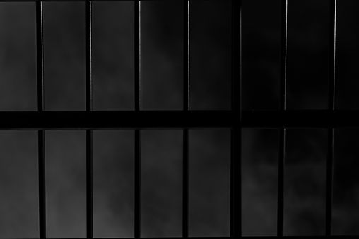 Caged 1.jpg