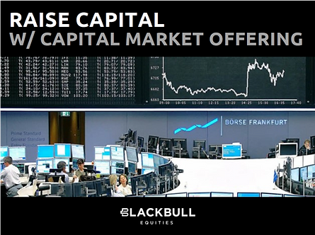 1_capital-market-offering.png