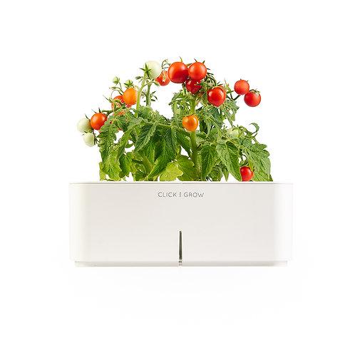 Smart Pot - Mini Tomato