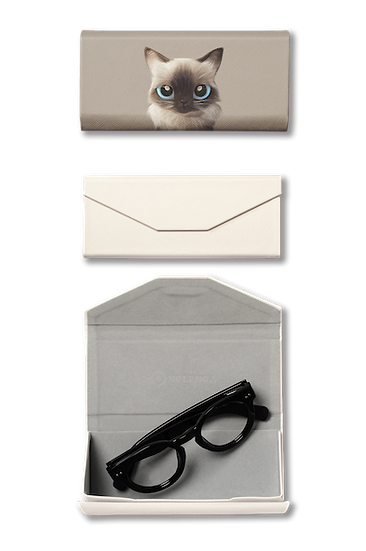 Foldable spectacle case_SugarCat CandyDoggie_Hongsi the Baliness cat