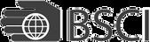 Bsci certi Logo 3.png