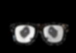 pinhole glasses_the panda.png