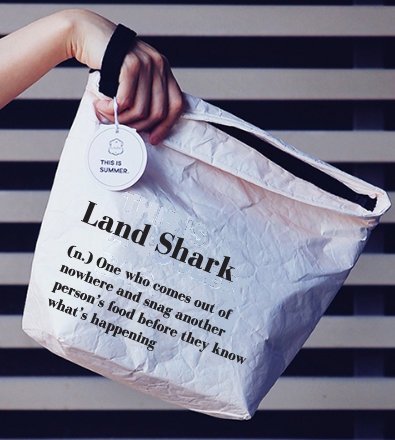 Insulated Lunch Bag with hand strap (Land shark...)