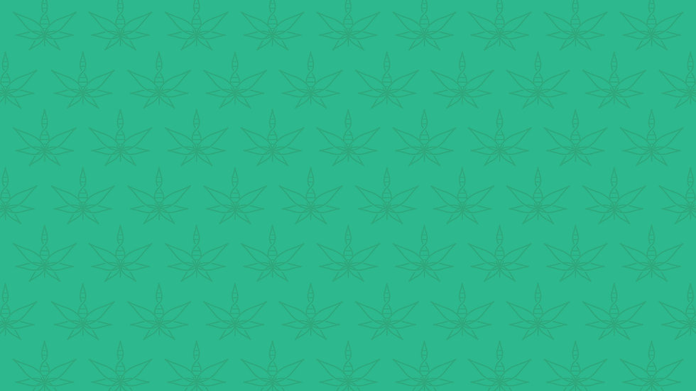 Pattern_lightgreen.jpg