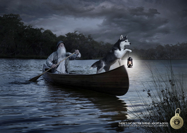 SPCA Canoe.jpg