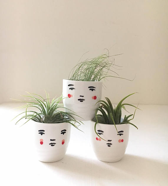 mini face pots and air plants for my little belleville