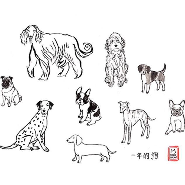 dogs for Year of the Dog Chinese New Year