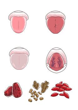 『ゆほびか2月号』体験談イラスト-⑤