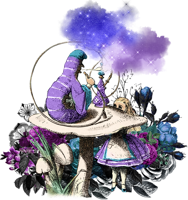 alice_color_ (40).png