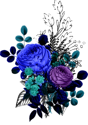 alice_color_ (20).png