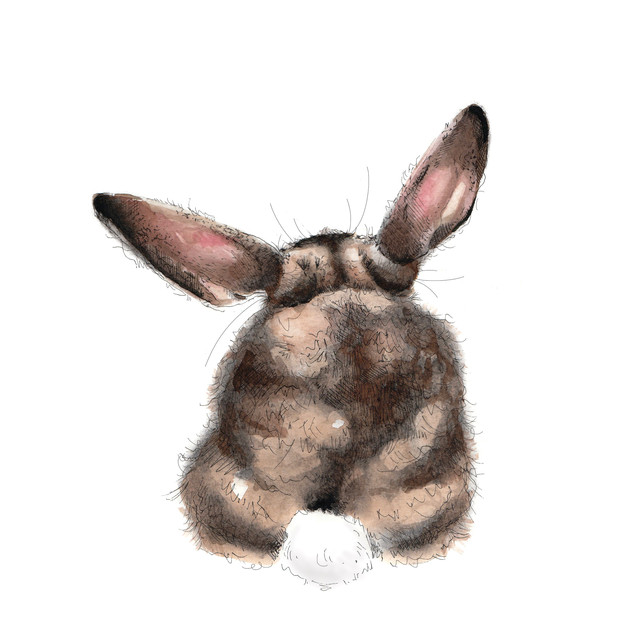 Bunny Butt (For sale in prints!)