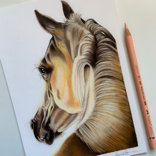 Horse A5 size