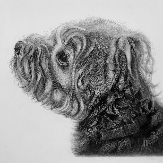 Bailey Black and White A4 size