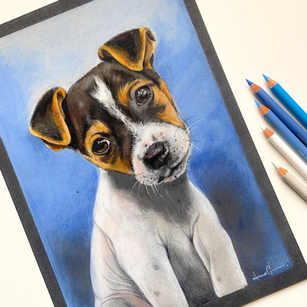 Terrier A4 size