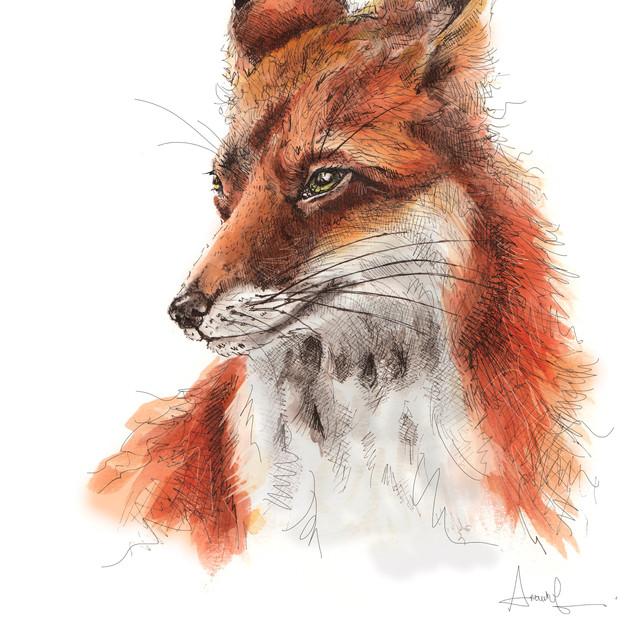 Mrs Fox A4 size