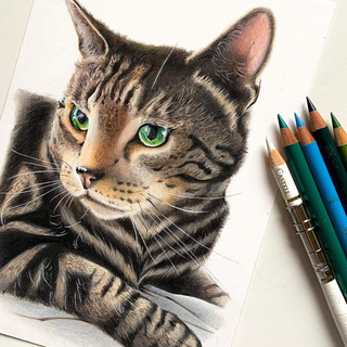 Green Eyed Cat A5 size
