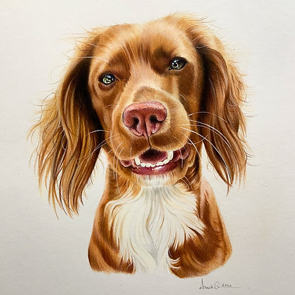 Bespoke portrait - private listing
