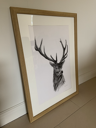 Charcoal Stag