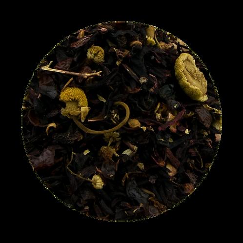 Prickly Pear Herbal