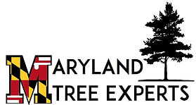 Maryland tree experts logo_edited.jpg