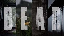 Bear - Producer