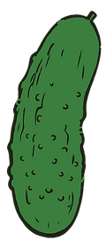 Updated_pickle.PNG