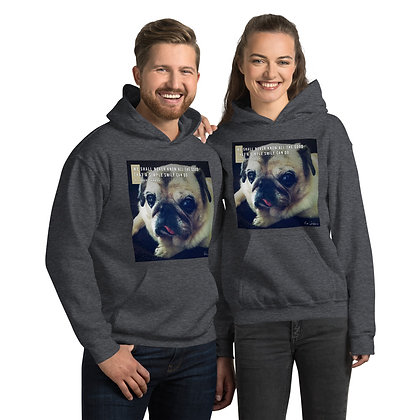 We Shall Never Know Hoodie