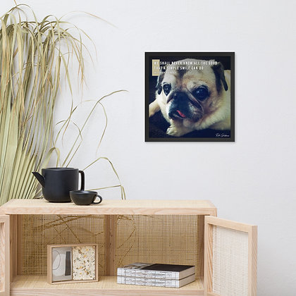 We Shall Never Know Framed Photo Paper Poster