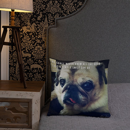 We Shall Never Know Pillow