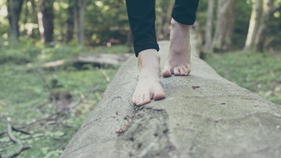 Nature Walk Body Oil