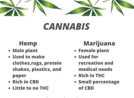 Hemp Education