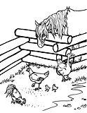Barn yard