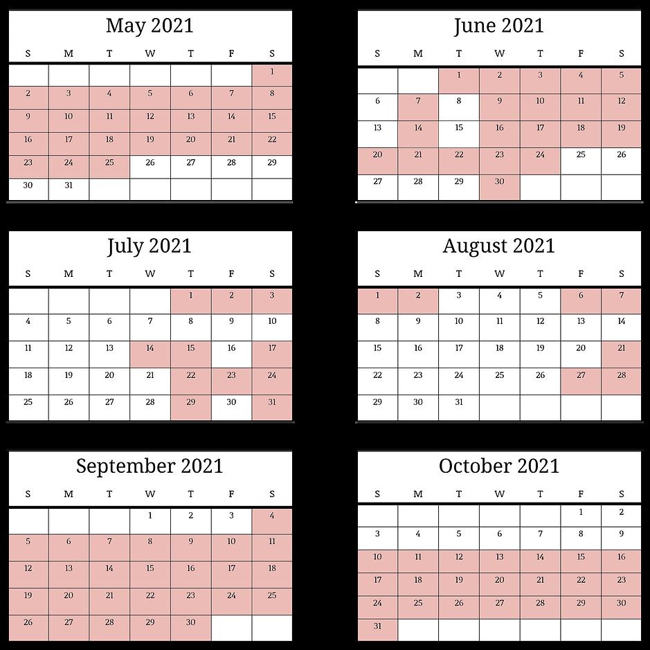 2021 Hourly & Birthday Calendar.png