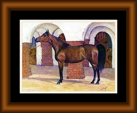 Classy Mare and Stable