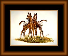 Two Happy Appy Foals