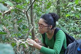 Talitha Ferreira dos Santos, PhD candidate (UFAM)
