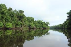 Anavilhanas National Park