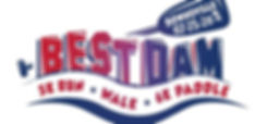 small 2020 logo.JPG