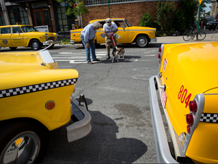 Vintage Checkers Return to Brooklyn