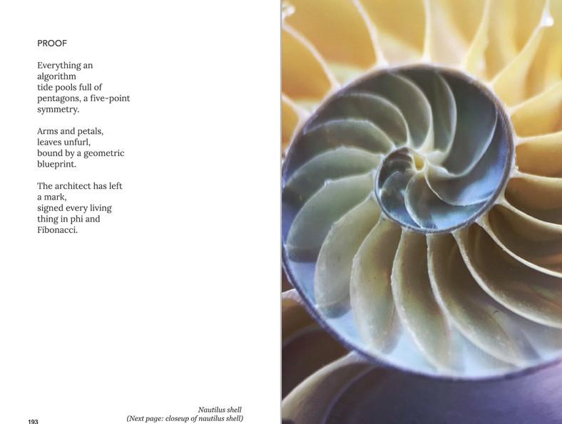 WA is Water - Proof poem