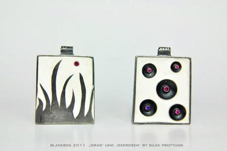 Blackbox-Gras und Seerosen