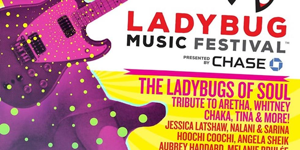 The LadyBug Festival