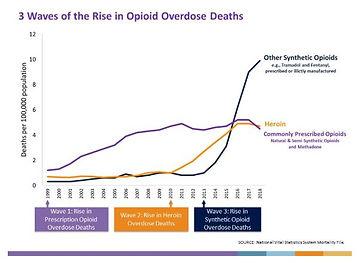 opioid graph.JPG
