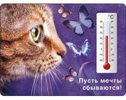 Магниты    с термометром  от 22 руб.