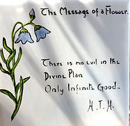 The Message of a Flower 1 by H.T.H..jpg