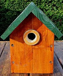 Bird box 1.jpg