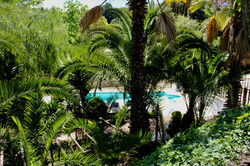 El Atico - view on pool and garden